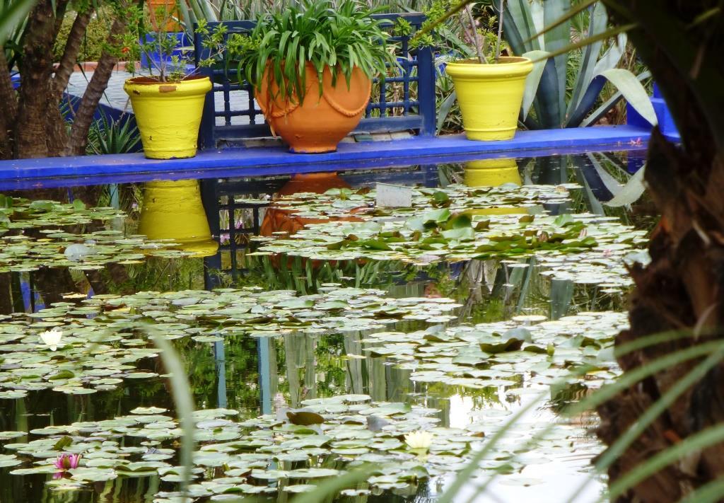 Bestglobe Les Couleurs Du Jardin Majorelle A Marrakech