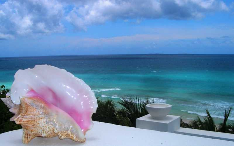 Caraïbes Anguilla La mer, le soleil... Une beauté un peu irréelle