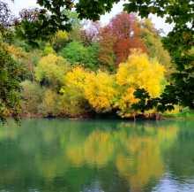 France Ile de France forêt automne couleurs jaune orangé impressionisme Bord de Marne à Noisiel