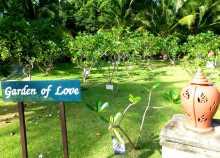"""""""Jardin d'amour"""" dans le jardin d'un hôtel de Koh Phi Phi en Thaïlande : chaque couple qui se marie ici est invité à planter un arbre"""