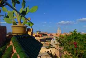 Maroc Un enchevêtrement de terrasses paisibles dominant la médina de Marrakech